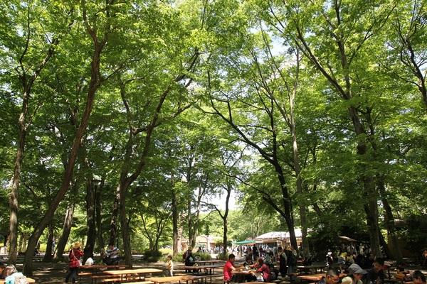 自然文化園_03.JPG