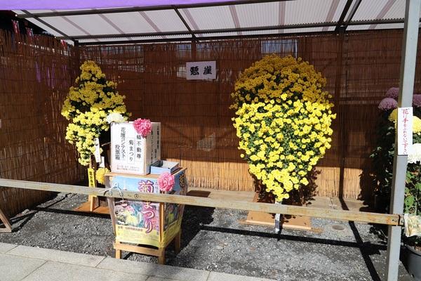 高幡不動_181110_09.jpg